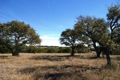 Dripping Springs Residential Lots & Land For Sale: Redemption Ave Lot 30