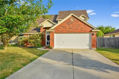 Kyle Single Family Home For Sale: 244 Unity