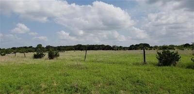 Lampasas Farm For Sale: TBD Burnet Cr 103