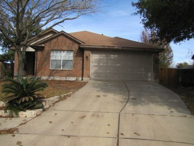 Pflugerville Rental For Rent: 21036 Morgans Choice Ln
