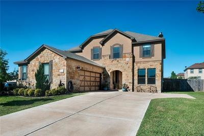 Pflugerville Single Family Home For Sale: 19136 Pencil Cactus Dr