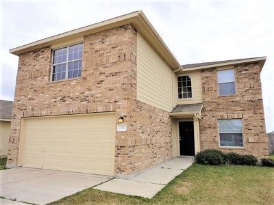Hutto Rental For Rent: 231 Almquist St