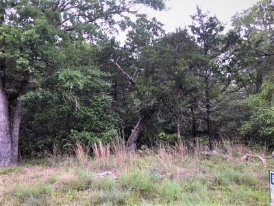 Smithville Residential Lots & Land For Sale: Lot 209 Cheyenne Dr