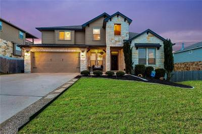 Dripping Springs Single Family Home For Sale: 18007 Linkhill Dr
