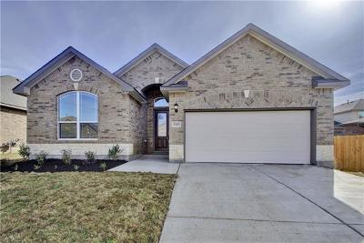 Pflugerville Single Family Home For Sale: 20413 Shellduck Dr