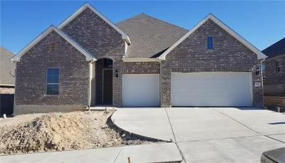 Leander Single Family Home For Sale: 716 Sunny Brook Dr