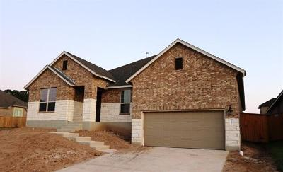 Leander Single Family Home For Sale: 2401 Carretera Dr