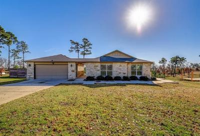 Bastrop Single Family Home For Sale: 113 E Tanglebriar Ct