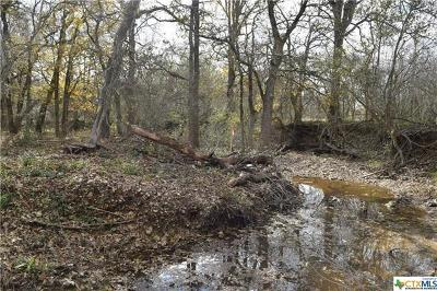 Guadalupe County Farm For Sale: 1465 Mill Creek Rd