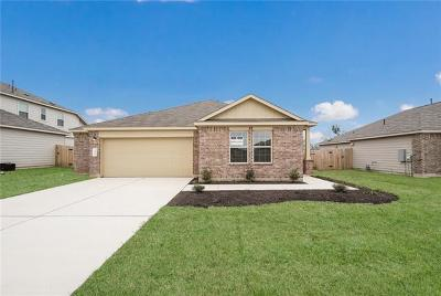 Hays County Single Family Home For Sale: 196 Jackson Blue Ln
