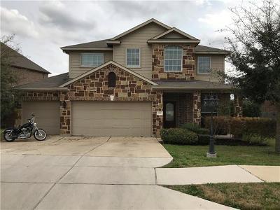 Buda Single Family Home For Sale: 148 Hazy Sunshine Way