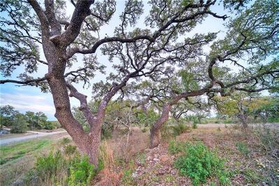 Dripping Springs Residential Lots & Land Pending - Taking Backups: 523 Dario Dr