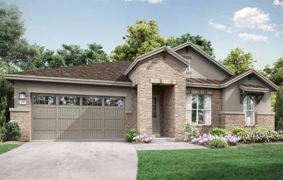 Round Rock Single Family Home For Sale: 3750 E. Palm Valley Blvd #112