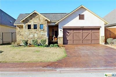 New Braunfels Single Family Home For Sale: 1223 Gruene Vintage