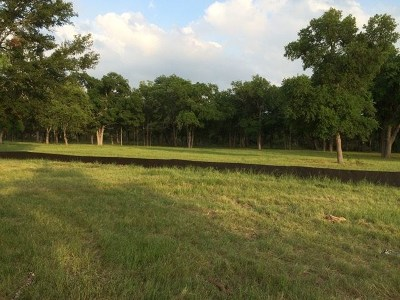 Liberty Hill Residential Lots & Land For Sale: 736 Buffalo Trl