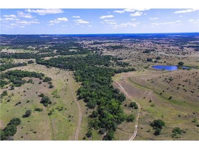 Lampasas Farm For Sale: Fm 580