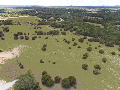 Dripping Springs Farm For Sale: Creek Rd