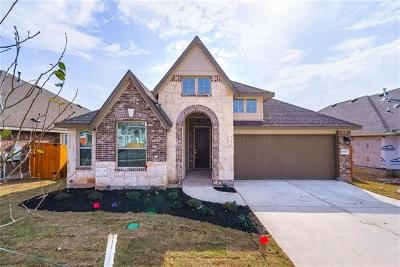 Pflugerville Single Family Home For Sale: 19328 Wearyall Hill Ln