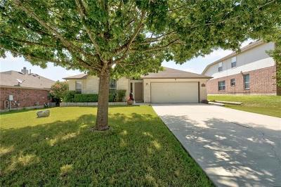 Kyle Single Family Home For Sale: 172 Ashwood