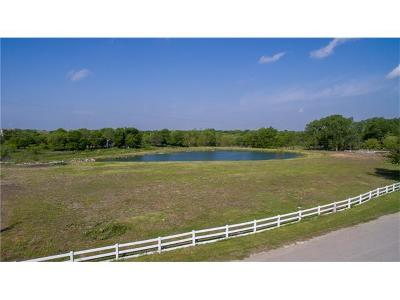 Round Rock Residential Lots & Land For Sale: 1060 Ray Berglund Blvd #6