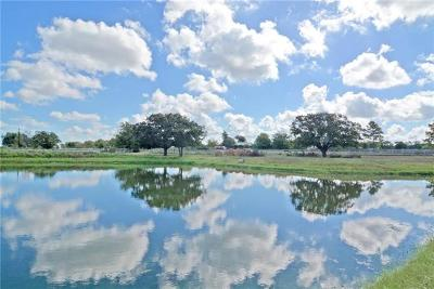 Bell County, Burnet County, Comal County, Fayette County, Hays County, Lampasas County, Lee County, Llano County, San Saba County, Travis County, Williamson County Farm For Sale: Skillet Rd