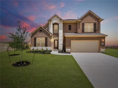Pflugerville Single Family Home For Sale: 20325 Martin Ln