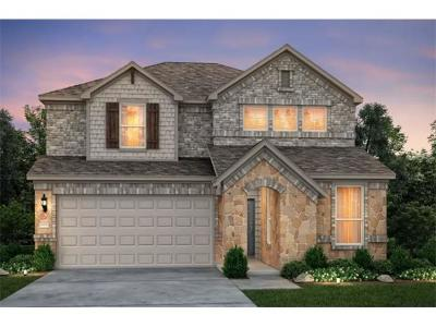 Travis County Single Family Home For Sale: 3001 Lions Tail St