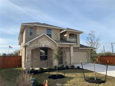 Pflugerville Single Family Home For Sale: 19308 Wearyall Hill Lane