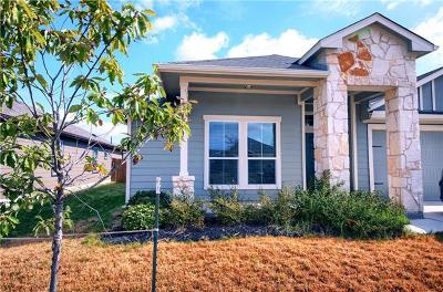 Hutto Single Family Home For Sale: 120 Navidad River Dr