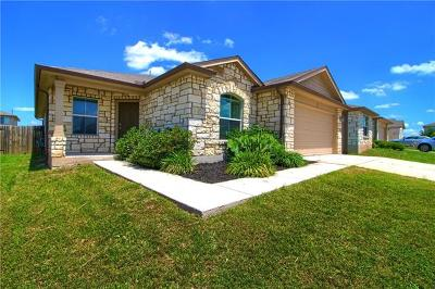 Kyle Single Family Home Active Contingent: 438 Nottingham Loop