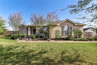 Hutto Single Family Home For Sale: 113 Guadalupe