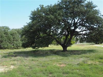 Dripping Springs Residential Lots & Land For Sale: 301 Reata Way