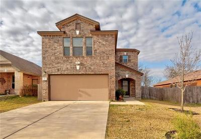 Kyle Single Family Home For Sale: 531 New Country Rd