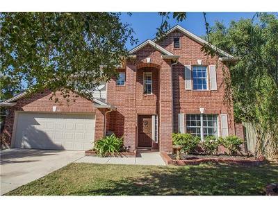 Kyle Single Family Home For Sale: 368 Bella Vista Cir