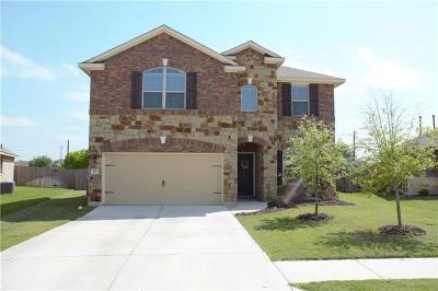 Pflugerville Single Family Home For Sale: 3717 Wetland Dr