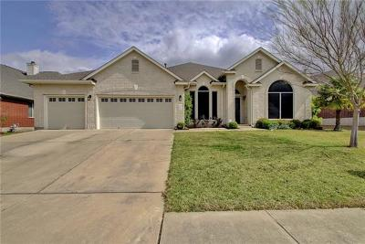 Pflugerville Single Family Home Active Contingent: 19428 Sea Island Dr