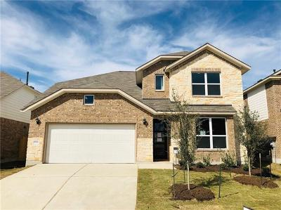 Pflugerville Single Family Home For Sale: 17016 Borromeo Ave