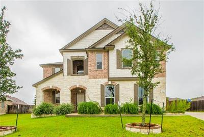 Pflugerville Single Family Home For Sale: 613 Lonesome Lilly Way