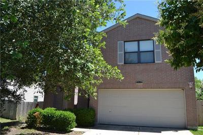 Kyle Single Family Home For Sale: 691 Abundance Ln