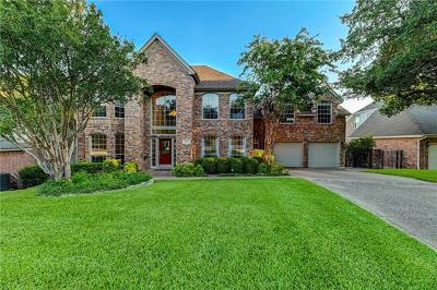 Travis County Single Family Home For Sale: 9262 Scenic Bluff Dr