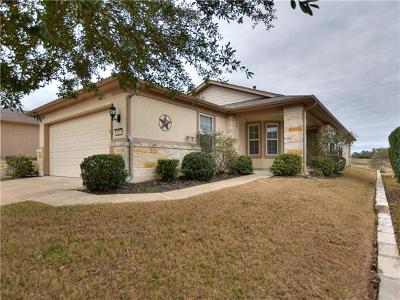 Georgetown Single Family Home For Sale: 601 Salt Creek Ln