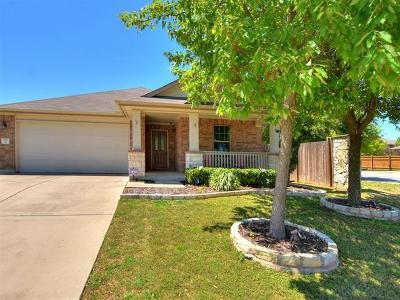 Georgetown Single Family Home For Sale: 127 Vallecito Dr