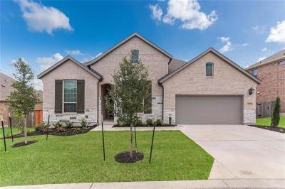 Austin Single Family Home For Sale: 1719 Cool Spring Way