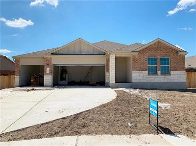 Round Rock Single Family Home For Sale: 1349 Chad Dr