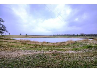 Taylor Farm For Sale: 401 County Road 454