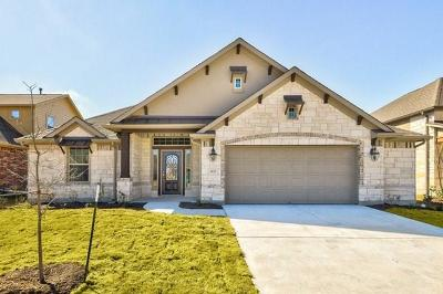 Pflugerville Single Family Home For Sale: 3821 Condor Stoop Dr