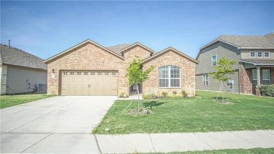 New Braunfels Single Family Home For Sale: 275 Lillianite
