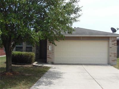Kyle Single Family Home For Sale: 113 Palo Duro Cv