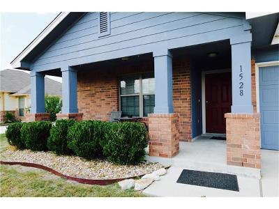 Kyle Single Family Home For Sale: 1528 Twin Cv