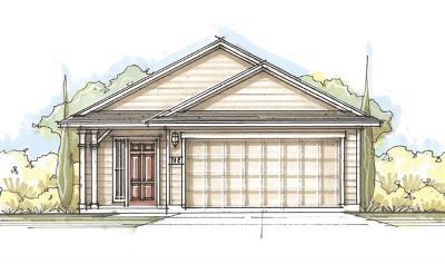 Buda Single Family Home For Sale: 203 Wapiti Rd